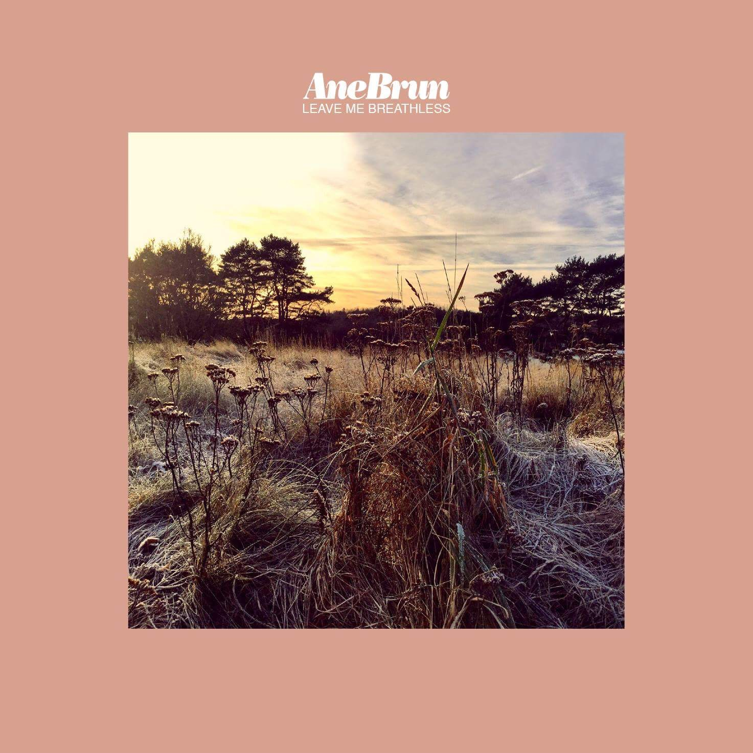 Album cover for And Brun: Leave Me Breathless (2016)